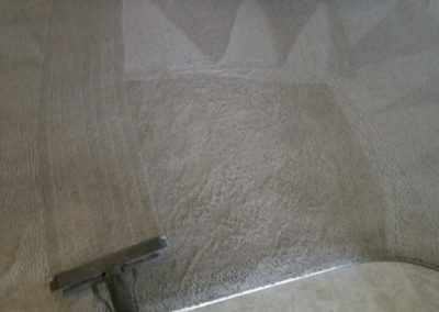 Residential Carpet and Vinyl cleaning Papillion